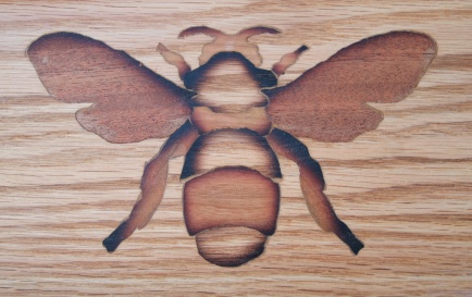 Bumblebee inlay detail