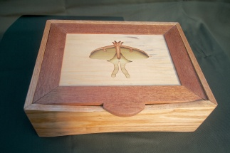 Luna Moth Stationary Box - $150